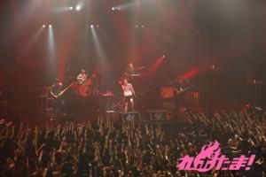 katoukazuki_live_2014_04